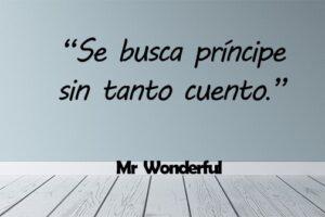 Frases Mr Wonderful