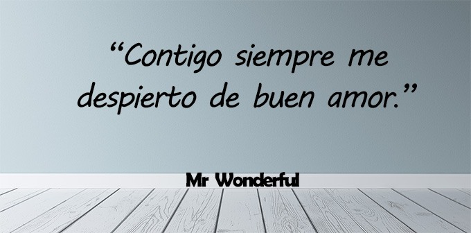 35 Frases Mr Wonderful Patrimonio De La Tienda Inspiradoras