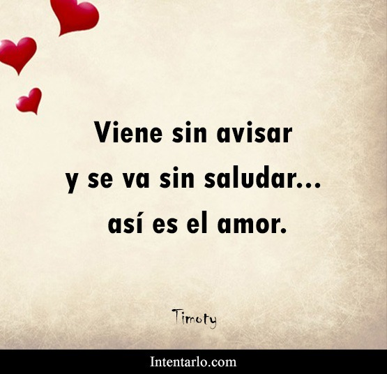 Las Mejores Frases De Amor Bonitas Y Románticas Mensajes