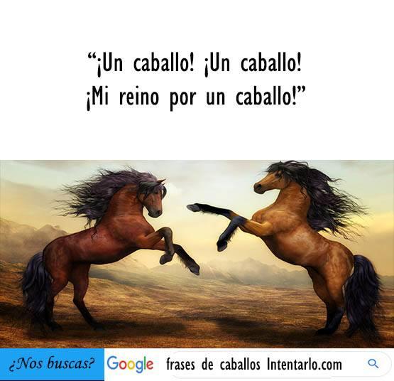 frases de caballos bonitas