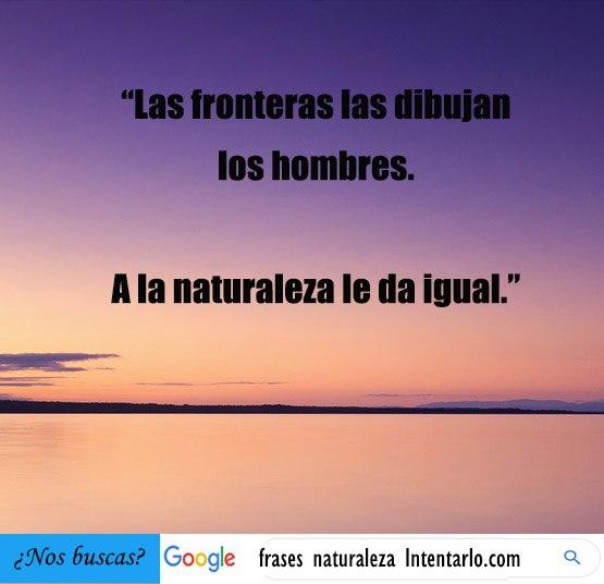 17 Mejores Frases De Naturaleza Y Libertad Para Reflexionar