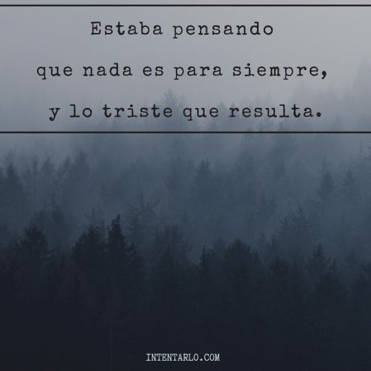 frases muy tristes